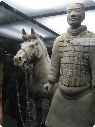 terracota_Soldier_Horse