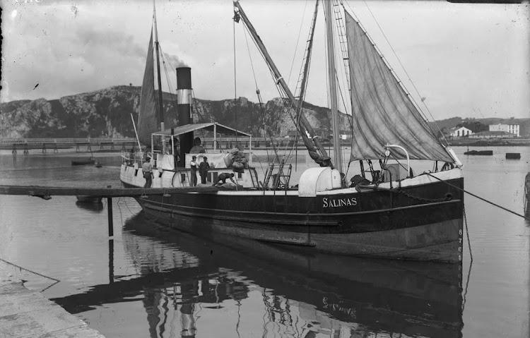 Vapor SALINAS en un puerto y fecha indeterminados. Foto de la web MEMORIA DIGITAL DE ASTURIAS.jpg