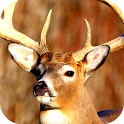 deer danger hunting 2014 icon