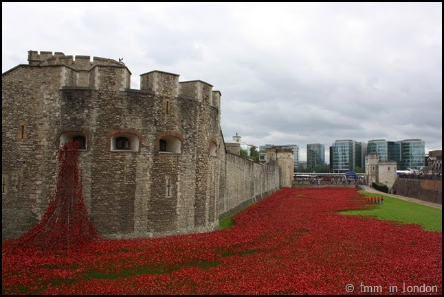 The ceramic poppies at the Tower of London