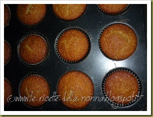 Muffin allo yogurt e mirtilli (9)