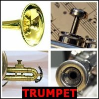 TRUMPET- Whats The Word Answers