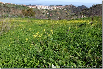4447 La Atalaya-Barranco García Ruíz