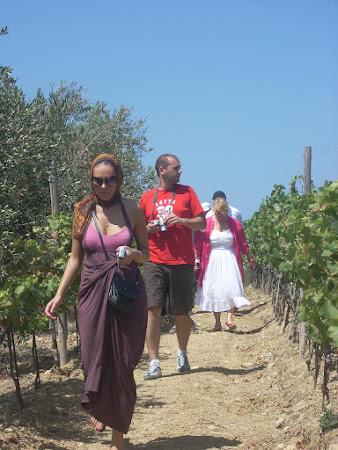 Infotrip. Excursie domeniile Ta Mena. Podgorii Malta