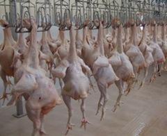 tangcuongkiemsoatthucpham thumb%25255B2%25255D - Tăng kiểm soát sử dụng hóa chất trong thực phẩm