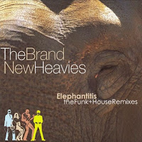 Elephantitis: The Funk & House Remixes
