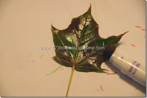 Fall Leaf Printing with Markers