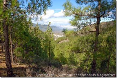 7028 Cru Tejeda-Artenara-Guardaya(Las Arbejas)