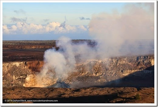 140724_HawaiiVolcanoesNP_0216