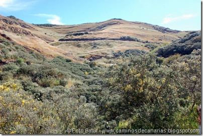 8157 Volcán Hondo Fagajesto(Montaña de Gaaleote)