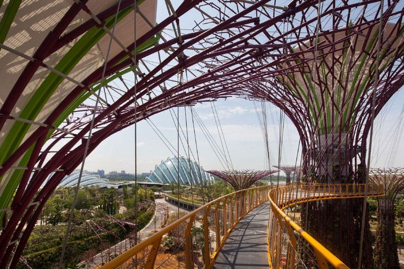 supertrees-singapore-1