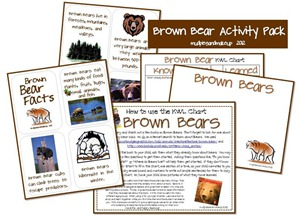 Brown Bear collage