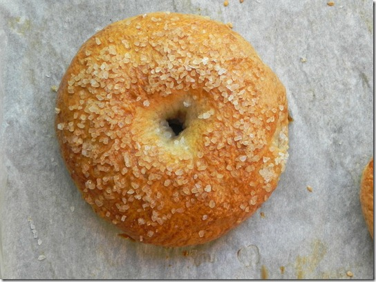 whole-wheat-sea-salt-bagel-1