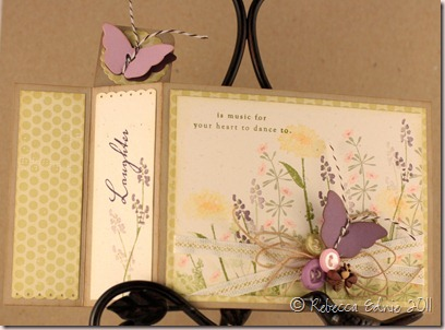 spring life wiper card