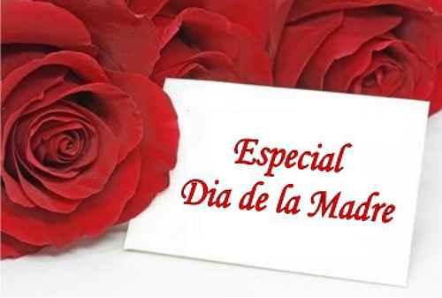 Dia especial: Dia de las madres