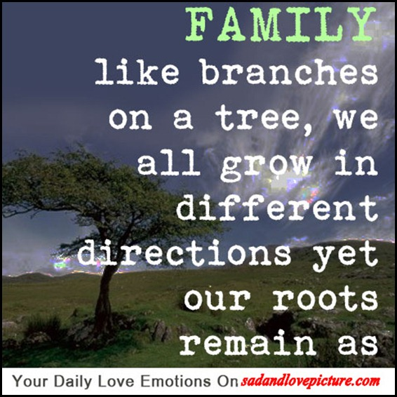 Sad And Love Picture Family Like Branches On A Tree We All Grow In