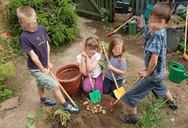 Potatoes_kids_school_garden1_pix