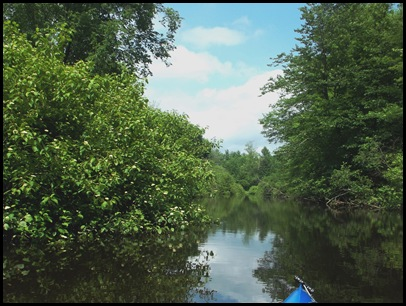 Kayaking the Exeter River 064
