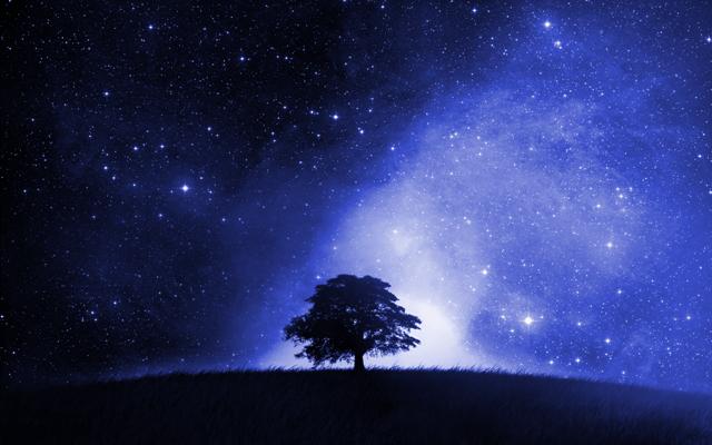calendario cosmico