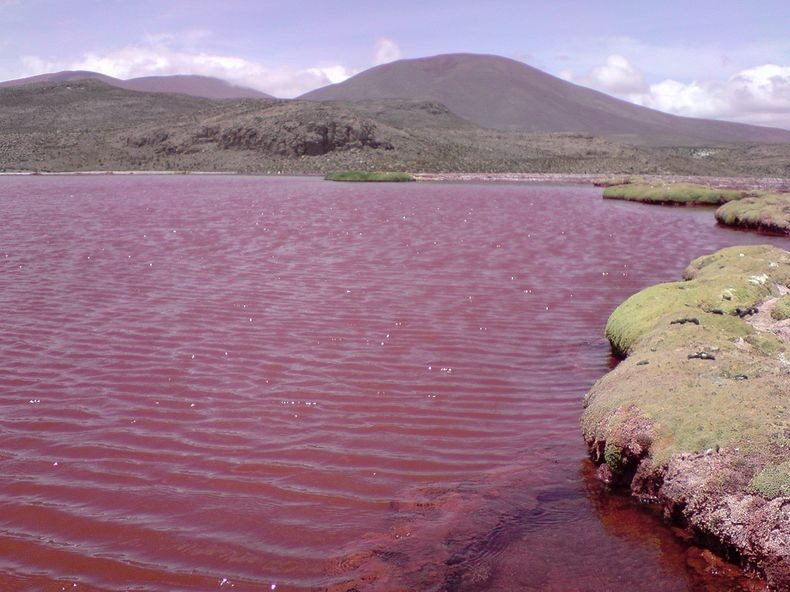 red-lagoon-chile-4
