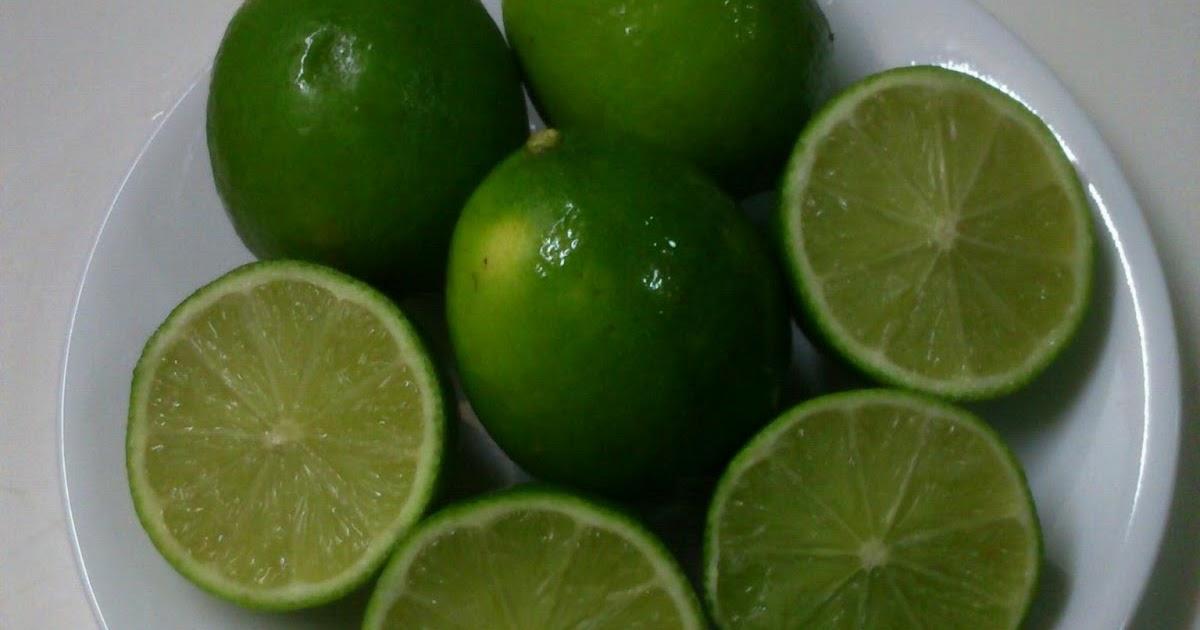 Cara budidaya – menanam jeruk nipis yang baik