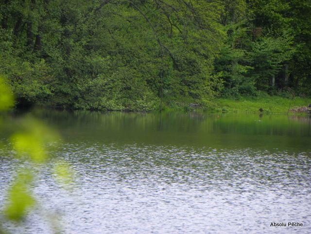 Petit lac photo #1147