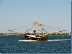 6953 Texas, South Padre Island - Osprey Cruises - Sea Life Safari  - shrimper