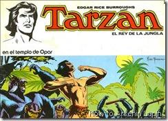 P00002 - Tarzan #2