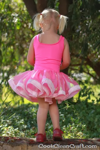 Angelina Ballerina Costume (14)