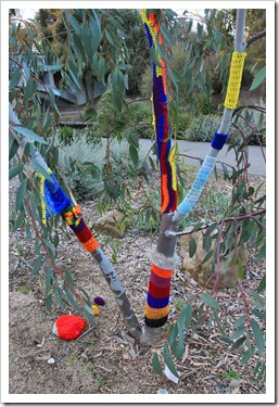 130119_UCDA_AustralianCollection_Natural-Transformations-yarn-bombing_18