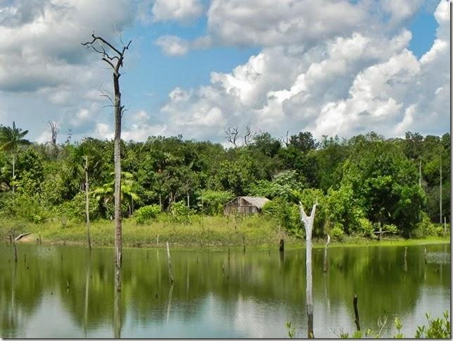 BR-319_Humaita_Manaus_Day_4_DSCN7975
