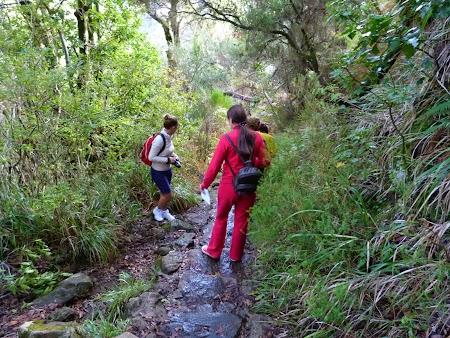 Revelion 2014:  pe munte in Madeira