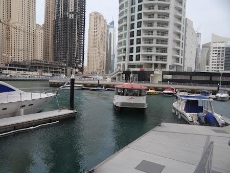 Transport public Dubai Marina