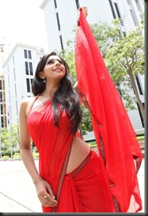 Rakul Preet Singh Hot Navel Photos in Saree, Rakul Preet Singh latest Hot Photos