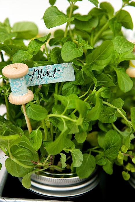 herb markers.jpg