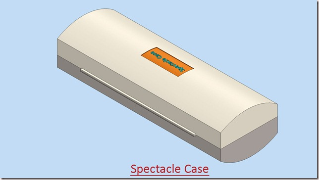 Spectacle Case_2