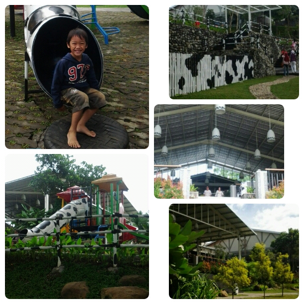 Ezra's School Holiday Activities : Cimory on The Valley, PVJ Bird Park, & Garden Ice