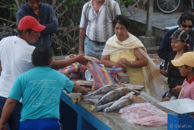 Galapagos Family Trip 064