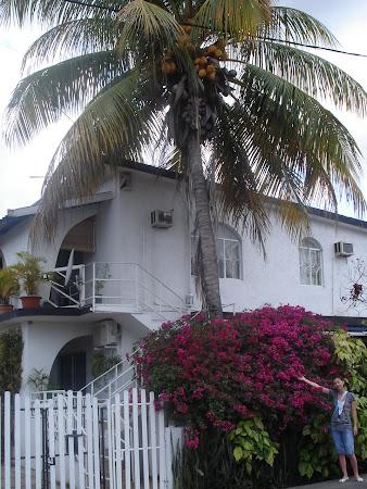 Vila din Flic en Flac Mauritius