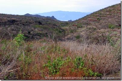 086 Camino Chinyero