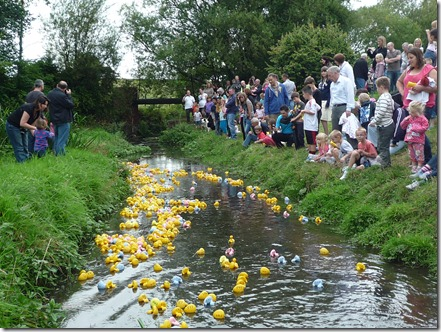 Wistaston Duck Race - 2011 Duck Race