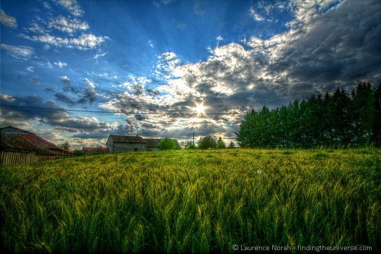 Saturated Wheat field HDR2