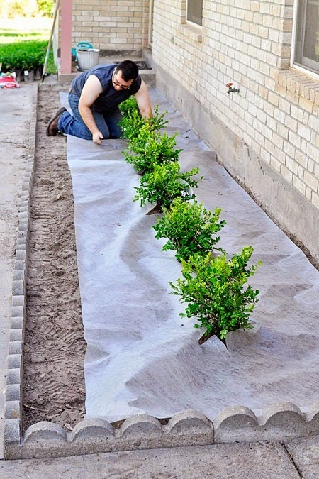 Alandscaping tutorial for adding boxwoods or plants to the front of your home to boost curb appeal. This is how we put landscape fabric.