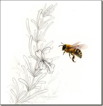 j&a bee