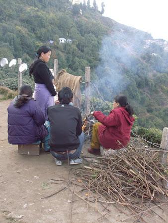 Obiective turistice India: Ceai la botul calului
