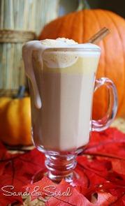 Pumpkin Lattes with Pumpkin Cinnamon Whipped Cream
