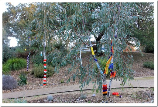 130119_UCDA_AustralianCollection_Natural-Transformations-yarn-bombing_39