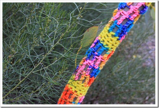 130119_UCDA_AustralianCollection_Natural-Transformations-yarn-bombing_04