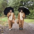 2 Bears