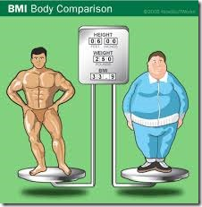 am i overweight body mass index and prime BMI
